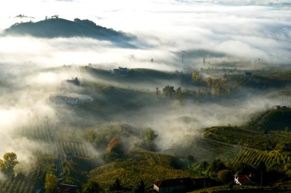 Région Prosecco di Conegliano Valdobbiadene