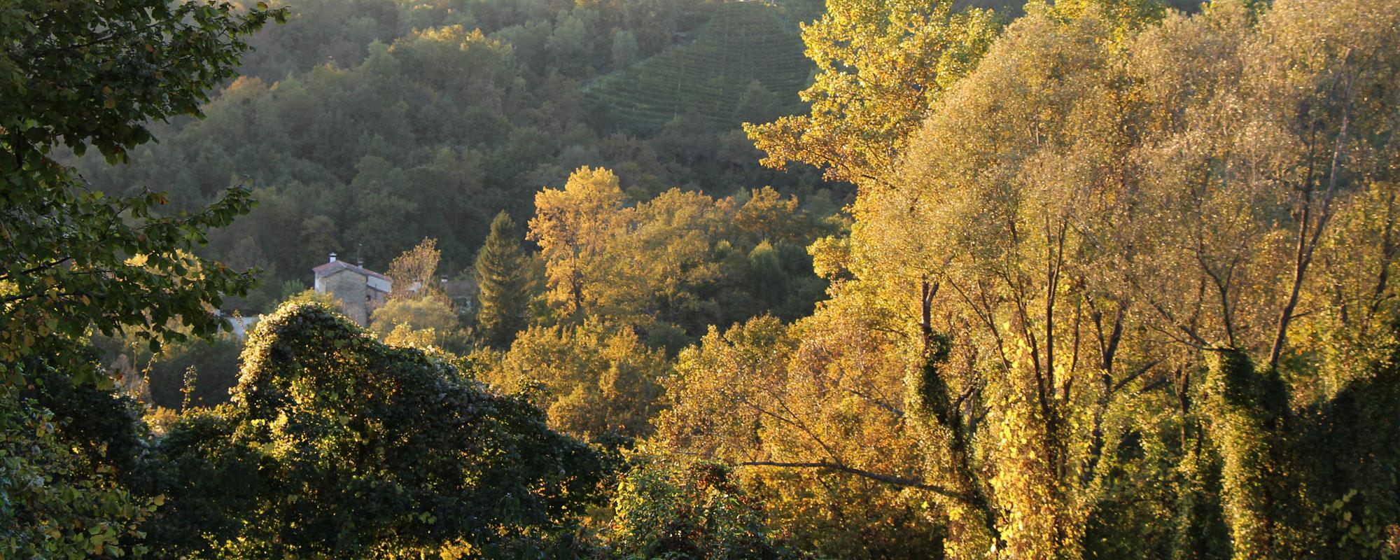 les collines de conegliano valdobbiadene