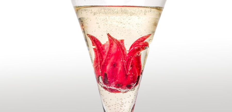 cocktail-prosecco-hibiscus